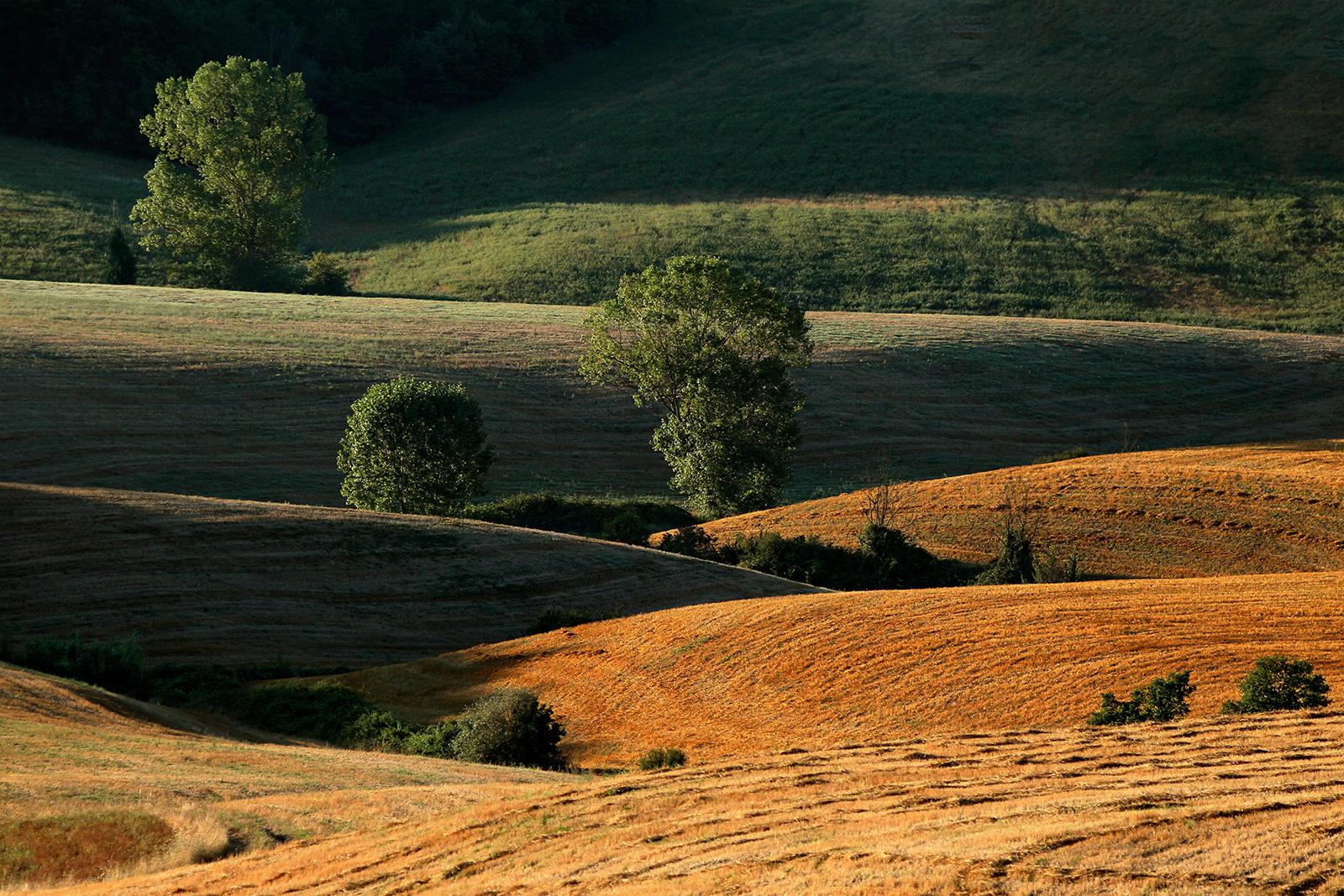 Terre di Siena: Contrasti
