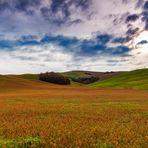 Terre senesi....breathtaking landscape