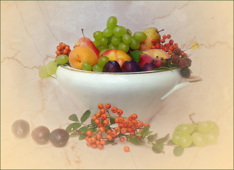 Terrine con frutas