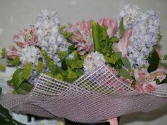 Test E-500. Flowers. Full frame. ISO 100