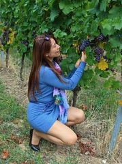 Testing the Grapes
