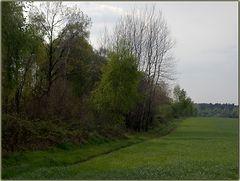 Teutoburger Wald bei Ibbenbüren