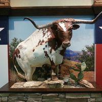 Texas 93