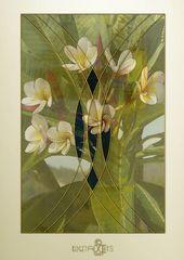 Thaiflower 2