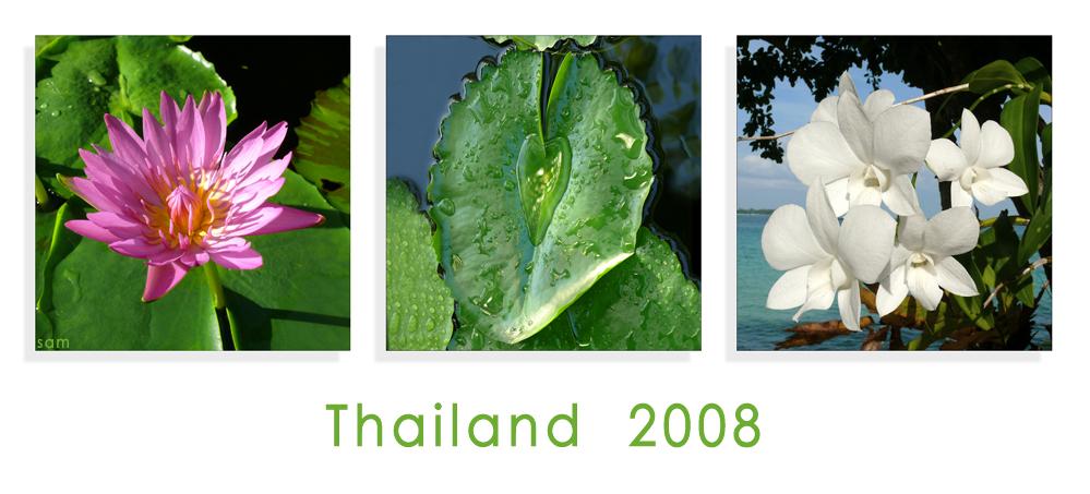 thailand 2008 (#2)