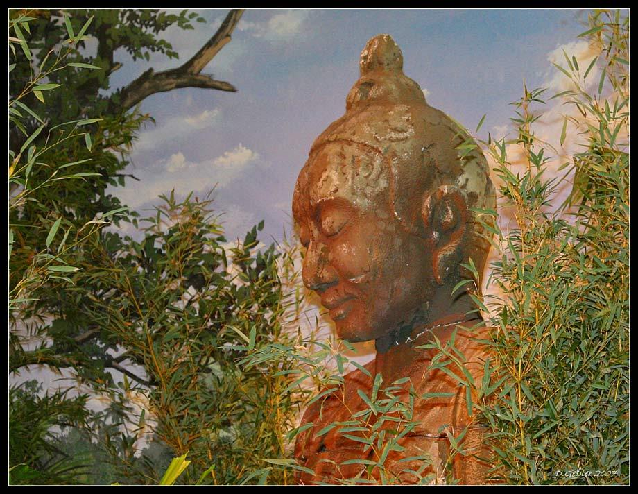 Thailand zu Gast 8