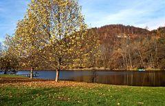 Thalersee bei Graz im Herbst!