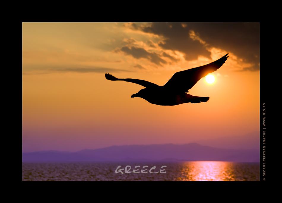 Thassos Island - Greece 2007.005