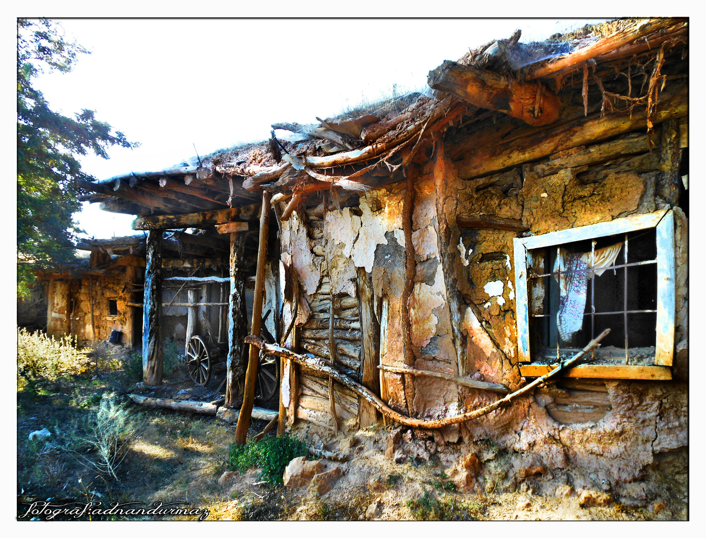 the abandoned houses, similar to the abandoned people, memories together slowly die.