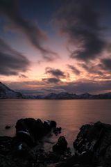 ...the arctic light...