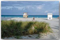 the Beach-Runner
