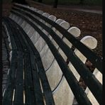 THE BENCH IN CENTRAL PARK
