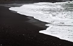 the black shore