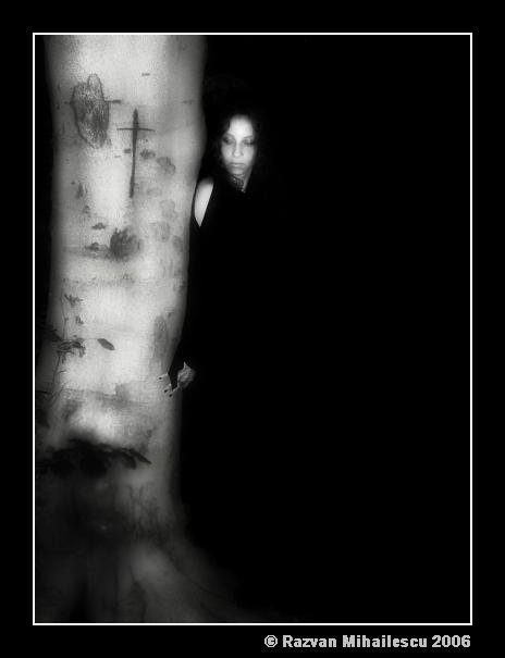 The Black Waltz
