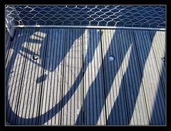 :: the bridge ::