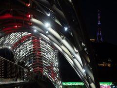 The Bridge of Peace at Night (2)