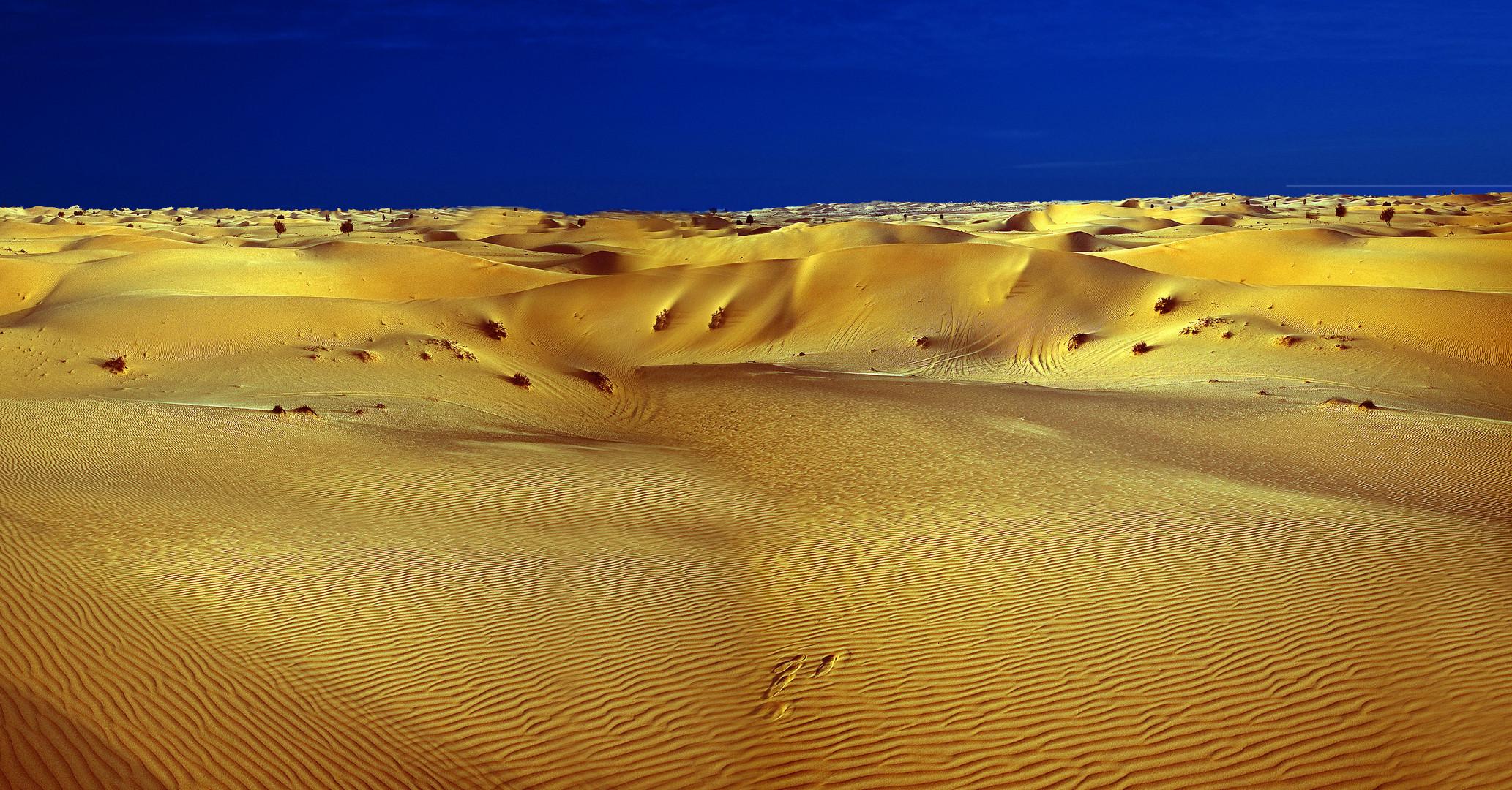 The  Desert  3