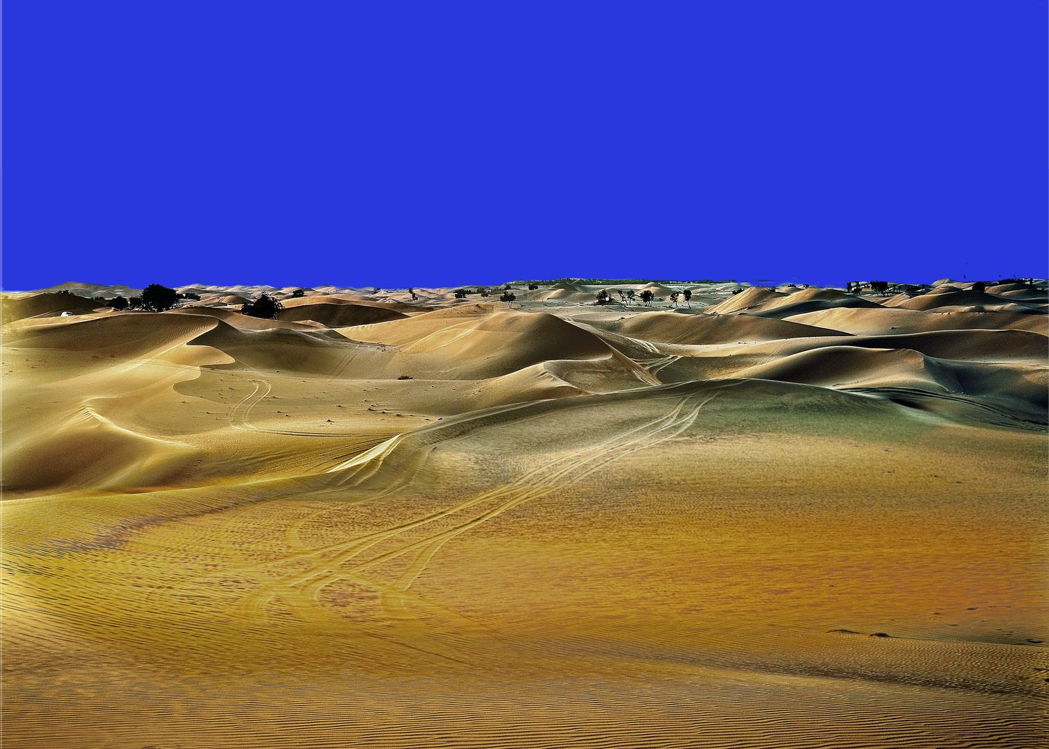The  desert in different  hours  2