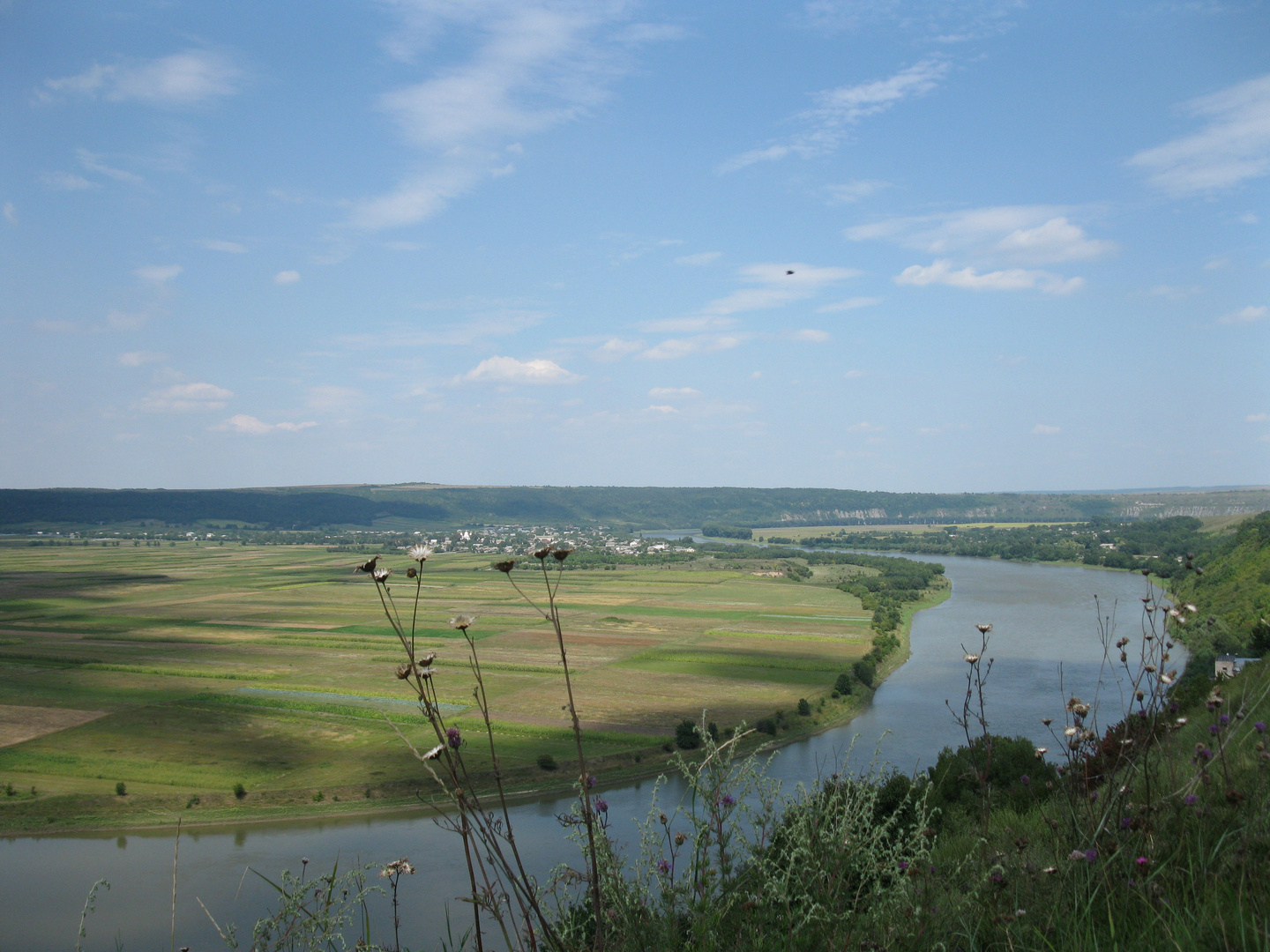 The Dniester (downstream)