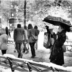 The Enchantment of a Snowy Evening in Central Park