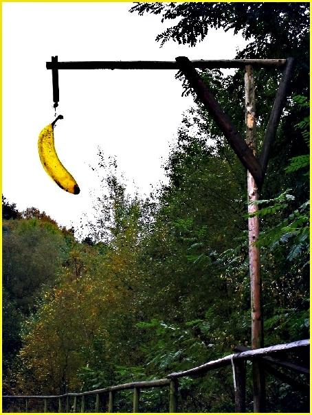 the end of banana joe