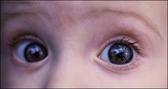 the eyes of our baby