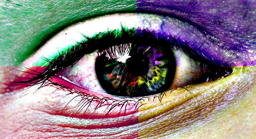 the fantastic eye