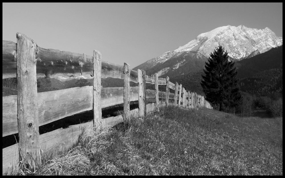 The fence....