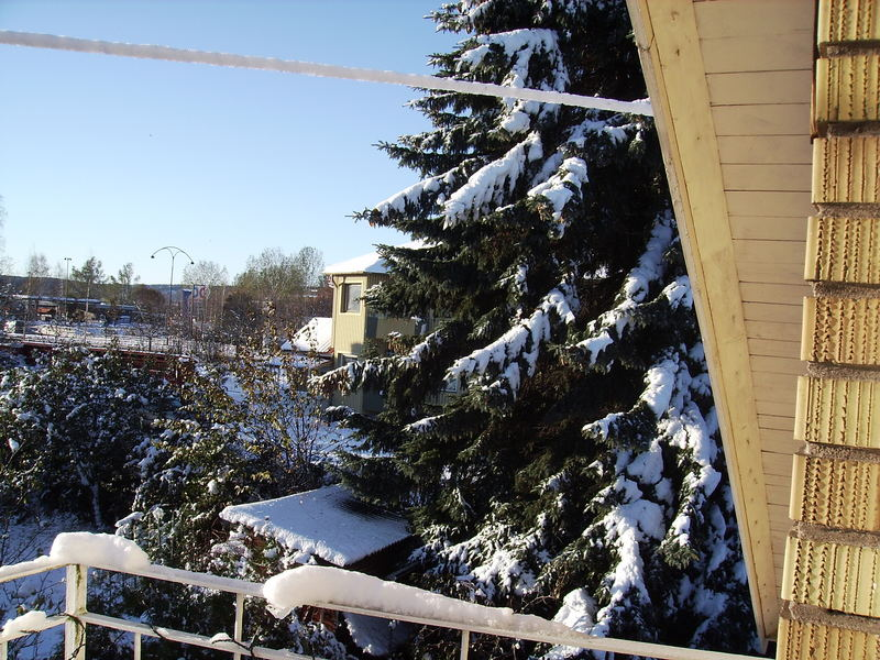 The first snow..