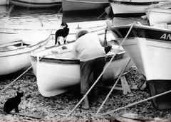 The fisherman and his cats