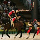 """the flyer"" german national team in Brno world vaulting champion ship agu-08"