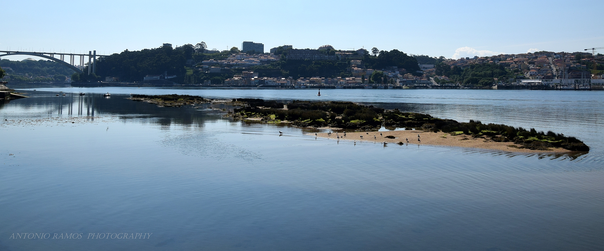 The friar's island
