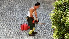 The gardener is working...