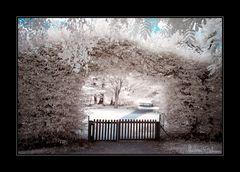 The Gate (II.)
