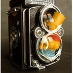 the Ghost of Rollei !