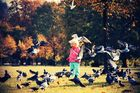 The girl pigeons