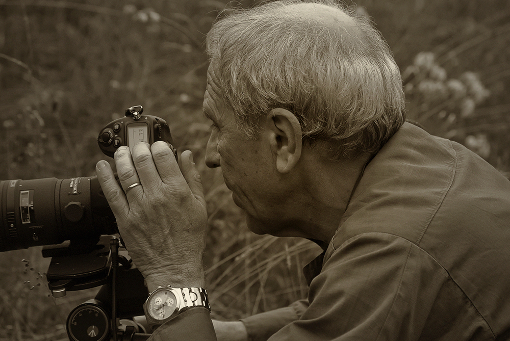 THE GREAT PHOTOGRAPHER