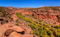 The Gulch Canyon 1 am Burr Trail, Utah, USA