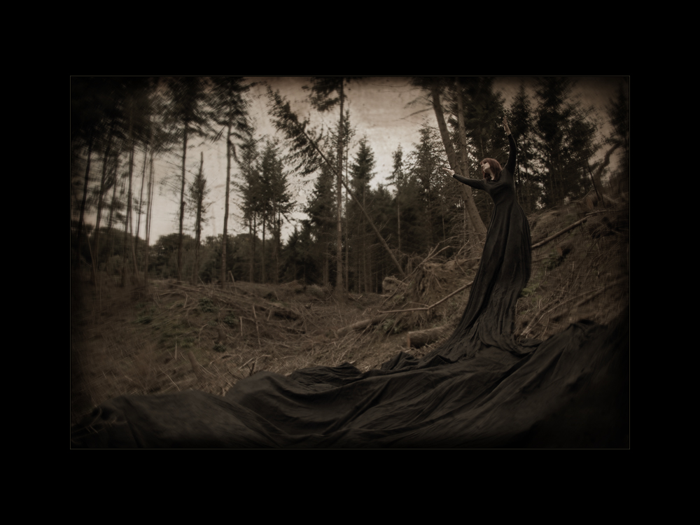 the hidden stormchild chronicles