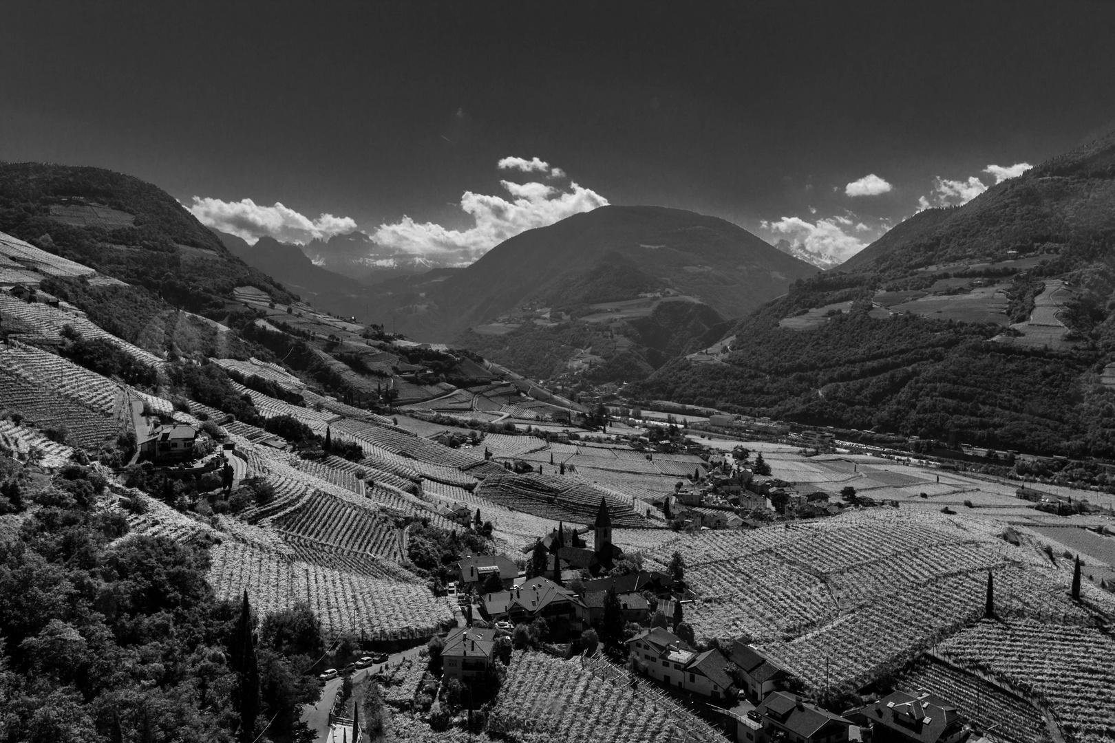 The hills of Bolzano