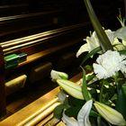 the Holy Trinity Church---- Straford