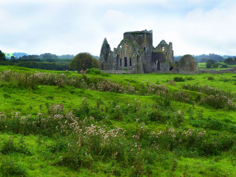 The Hore Abbey