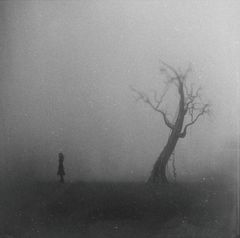 The Infinity Of Dead Trees [ part II ]