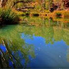 ** The Kalamina River and Gorge **