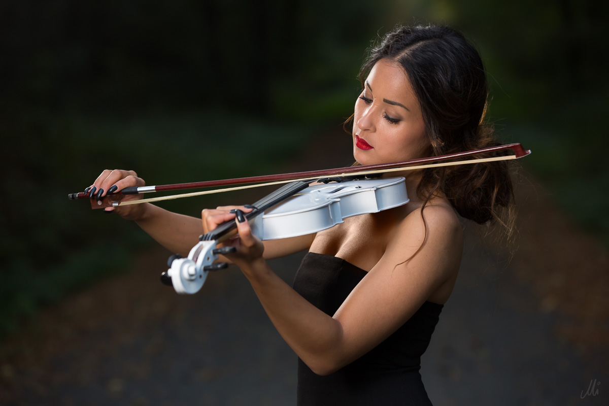 the lady and the violin