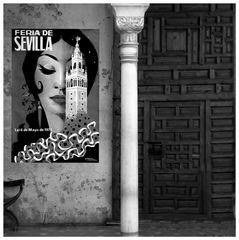 The lady from Sevilla
