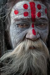 The Legendary Red Dots ~ The Saddhu Diaries