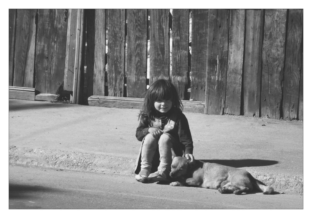 the little girl and the dog