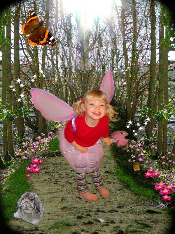 The Little Woodland Fairy