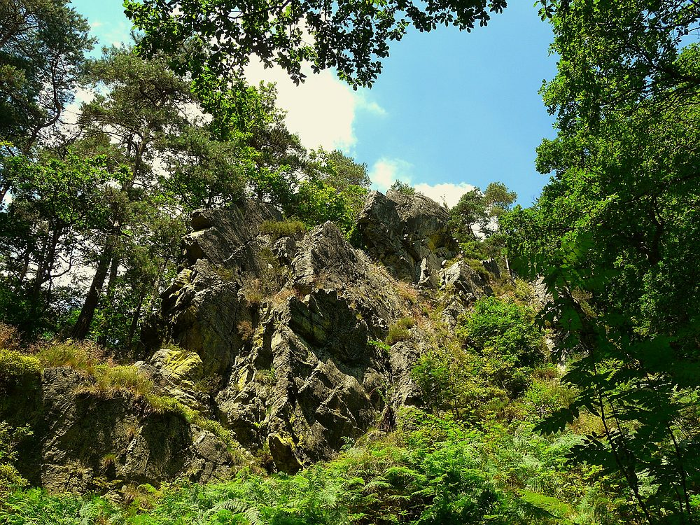 The Living Forest (5) : the Bilisse Rock.